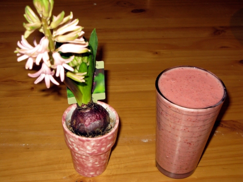 Smoothie with my new Hyacinth that I bought to brighten up my days. Smells delightful!